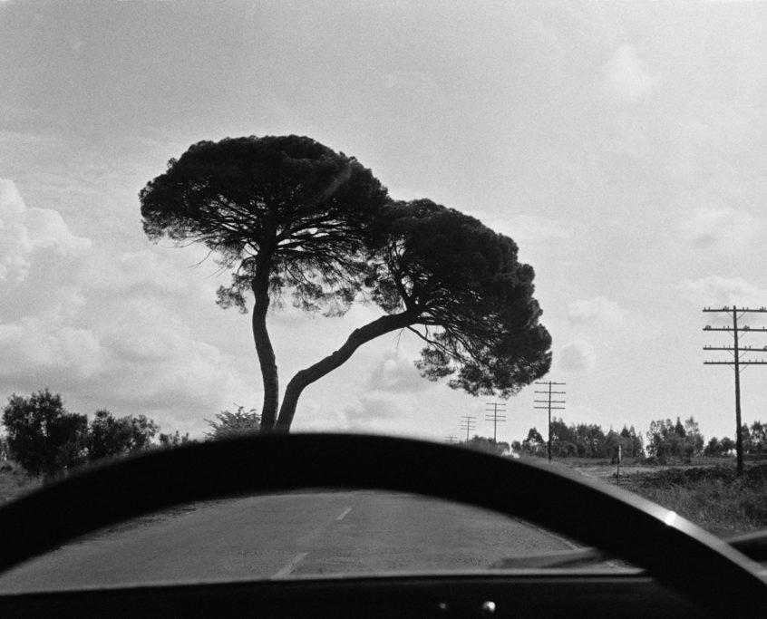 Joel Meyerowitz, Fr. E25, between Sevilla & Cordoba, Spain, 1967_1