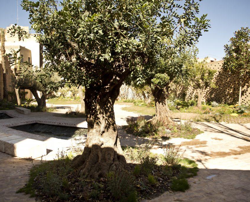 Ambiente_jardin_Enric Moran