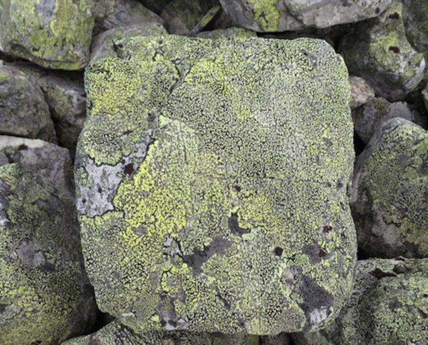 piedra mette-2